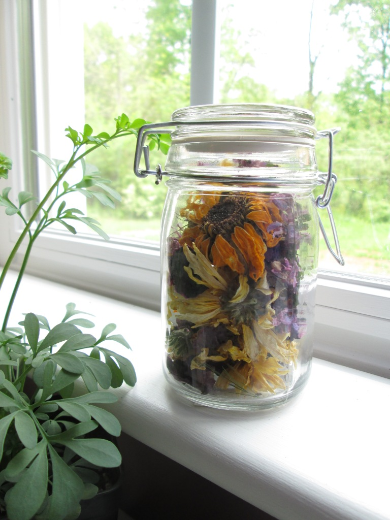 These dried flowers are from a Spring Equinox Bouquet I received as a gift.