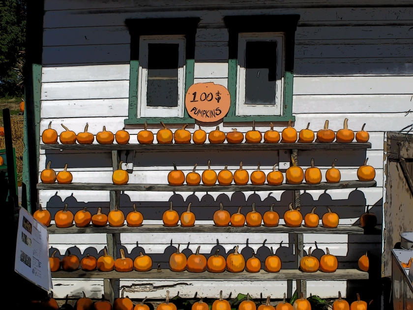 """In magick, pumpkins represent prosperity, abundance, a good harvest, and opportunity. If you set a light in a carved pumpkin (like a tea candle) then you are activating the """"heart"""" of the pumpkin and """"turning on"""" the gifts of a happy harvest and protection for hearth and home."""