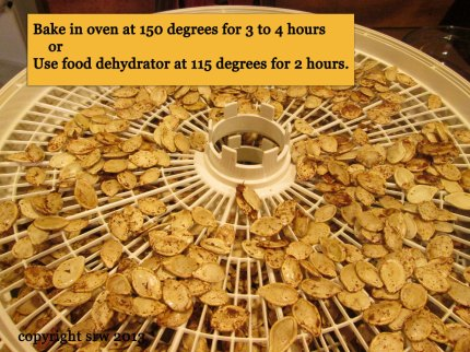 If you choose to dry your seeds in the oven, turn them every 30 minutes to avoid scorching.