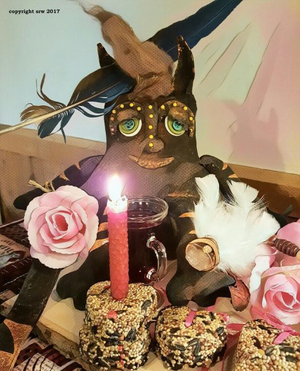Taco Cat casts a love spell with bird seed cakes and a red candle. As the birds eat the seeds, love will come into his life.