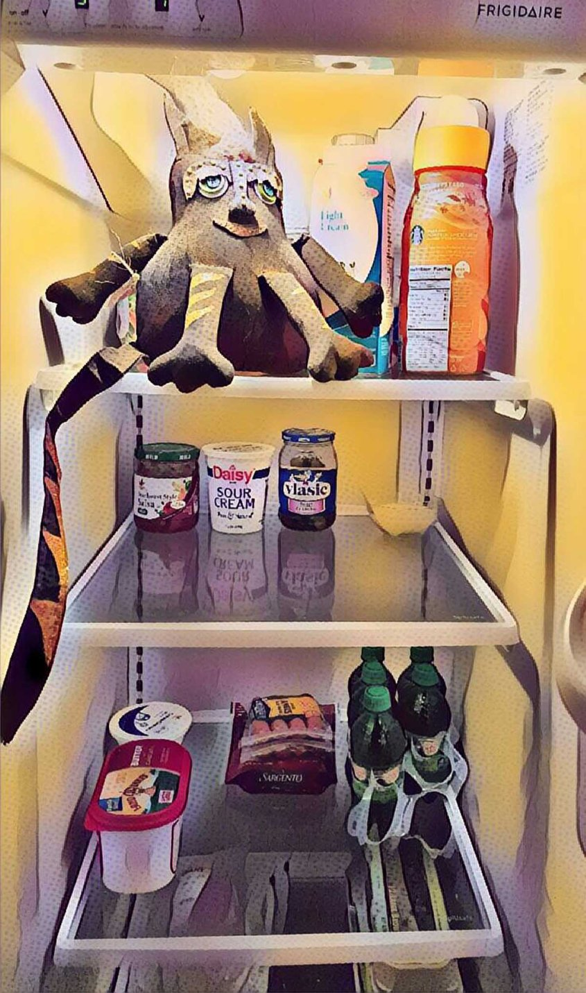 tacocatrefrigerator