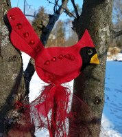 redbirdoutside2
