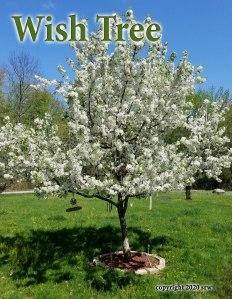 wishtree2